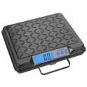 Salter Brecknell Gp100 Scales