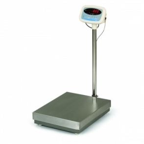 Salter Brecknell S100 Scales